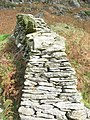 A close up of a wall - geograph.org.uk - 264198.jpg