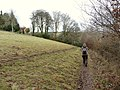 A footpath which runs near Raleigh Manor - geograph.org.uk - 1718965.jpg