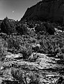 A pinyon-juniper forest (foreground). Exhibit 21-P-2. ; ZION Museum and Archives Image ZION 14950 ; ZION 14950 (b60e211bac0c436ca5a96df7394588db).jpg
