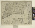 A plan of the city and environs of New York in North America (NYPL Hades-1784720-psnypl prn 1057).tiff