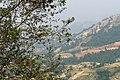 A view from Nagarkot panoramic hiking trail, 7 May 2019 3.jpg