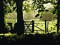 Acorn Bank - geograph.org.uk - 262226.jpg
