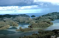 Aerial view limestone islands palau1971.jpg