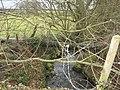Afon Cadnant - geograph.org.uk - 739528.jpg