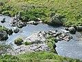 Afon Irfon north-west of Abergwesyn, Powys - geograph.org.uk - 1507344.jpg