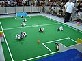 Aibos playing football at Robocup 2005.jpg