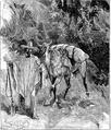 Aimard - Les Chasseurs d'abeilles, 1893, illust page 053.png