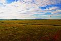 Airborne in Masai Mara.jpg