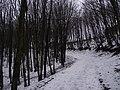 Aleksotas, Kaunas, Lithuania - panoramio (3).jpg