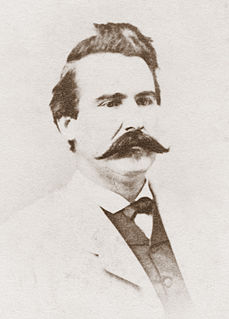 Alexander W. Terrell Confederate Army general and american diplomat