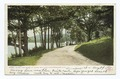 Along the Shore, Alton Bay, Lake Winnipesaukee, N. H (NYPL b12647398-68488).tiff