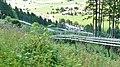 Alpsee Coaster - Rodelbahn - panoramio (4).jpg