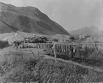 Alutiiq - Salmon drying. Alutiiq village, Old Harbor, Kodiak Island. Photographed by N. B. Miller, 1889