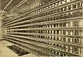 American telephone practice (1905) (14733380746).jpg