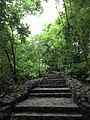 Ancient Steps Towards Eternity!.jpg