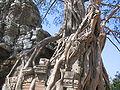Angkor 2005 3.JPG