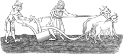A crude medieval line drawing, showing a man with a team of two oxen ploughing a field, assisted by a woman. Both the man and woman are dressed in long medieval cloths.