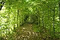 Ansembourg, -Tunnel-.jpg