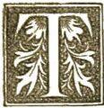 Antenicene T.jpg