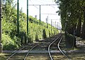 Antwerpen - Antwerpse tram, 23 juli 2019 (217, Cuperusstraat).JPG