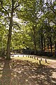 Appleslade Bottom car park, New Forest National Park - geograph.org.uk - 1018803.jpg
