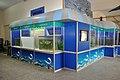 Aquarium Life - Bardhaman Science Centre - Bardhaman 2015-07-24 1298.JPG