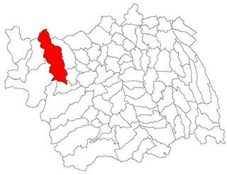 Asău,  Bacău, Румыния