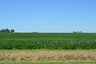 Ashkum Township, Iroquois County, Illinois - Fields west of Ashkum