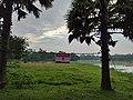 Asia Bangladesh.jpg