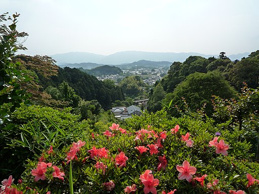 Asuka Nara 2009-5-23