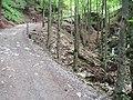 Aufstieg zum Plattenboden - panoramio.jpg