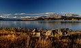 Autumn at Lake Tekapo NZ (9) (8670140675).jpg