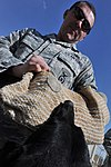 Bagram's Finest Military Working Dog DVIDS371132.jpg