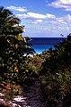 Bahamas 1989 (341) Eleuthera Harbour Island (24212135132).jpg