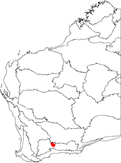 Banksia viscida map.png
