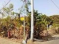 Barangay's of pandi - panoramio (106).jpg