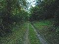 Barkestone Wood, Leicestershire - geograph.org.uk - 64008.jpg