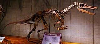 <i>Baryonyx</i> Genus of non-avian dinosaurs