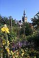 Basiliek-Onze-Lieve-Vrouw-Hemelvaart, tuin pastorie.jpg