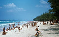 Beach in or near Havanna 1973 PD 2.jpg