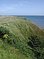 Beacon Hill, Flamborough - geograph.org.uk - 538264.jpg