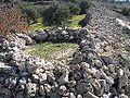 Beitar-158.jpg