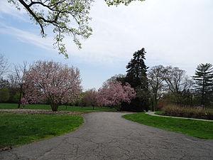 Bellevue State Park (Delaware) - Walking trail at Bellevue State Park.