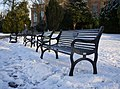 Benches in the snow, Botanic Gardens - geograph.org.uk - 1659842.jpg