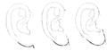 Bertillon - Identification anthropométrique (1893) 062.1 n&b.png