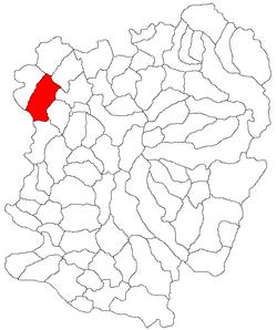 Vị trí của Berzovia