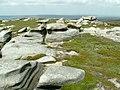 Bleaklow Stones - geograph.org.uk - 458515.jpg