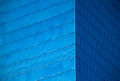 Blue (7910293722).jpg