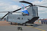 Boeing-Vertol CH-47F Chinook 'D-890' (35756133671).jpg