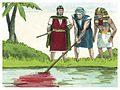 Book of Exodus Chapter 8-4 (Bible Illustrations by Sweet Media).jpg